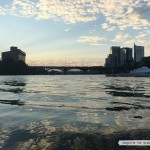 See the bats in Austin - bats under the Congress Ave Bridge