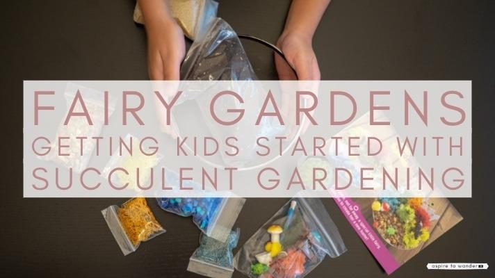 fairy gardens: introducing children to indoor gardening