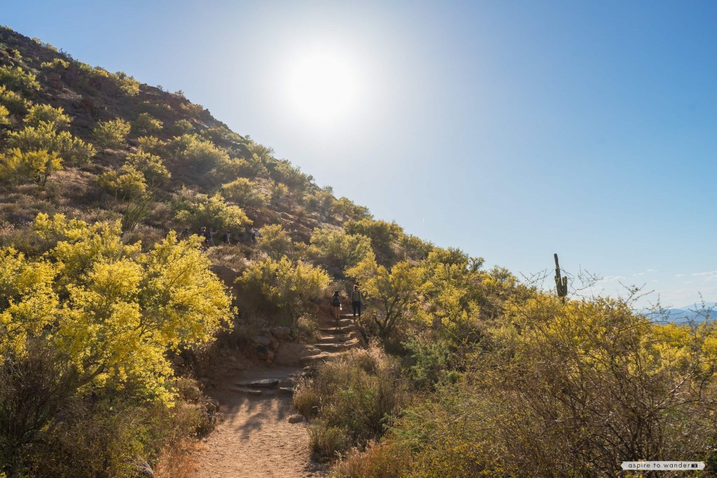 Pinnacle Peak Park | Scottsdale | Phoenix | Arizona | Sonoran Desert