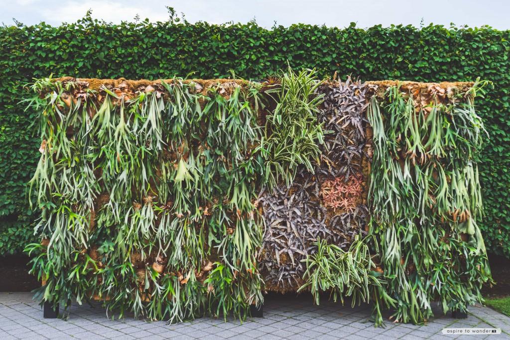 New York Botanical Garden | NYBG | The Living Art of Roberto Burle Marx